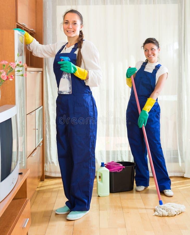 Yrkesmässiga rengöringsmedel på arbete arkivbilder