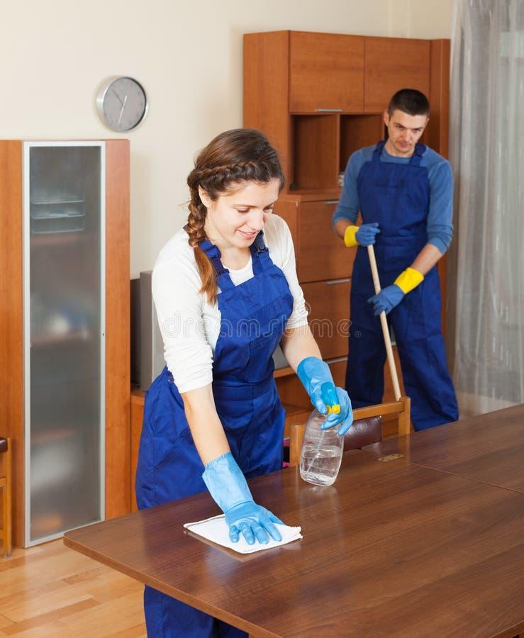 Yrkesmässiga rengöringsmedel som gör ren möblemang arkivbild