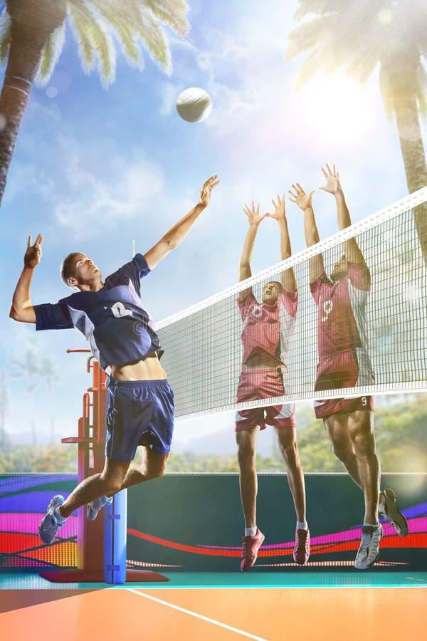 Yrkesmässiga volleybollspelare i handling på domstolen för solig dag fotografering för bildbyråer