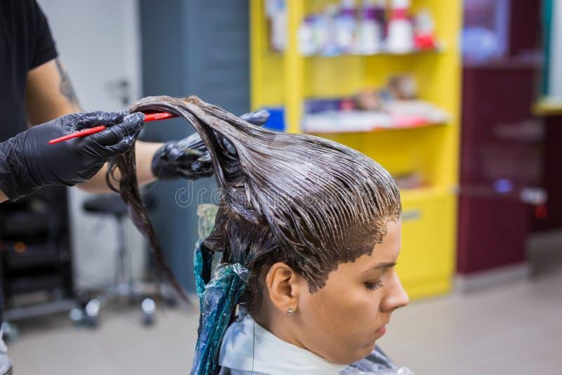 Yrkesmässigt frisörfärgläggninghår av kvinnaklienten på studion fotografering för bildbyråer
