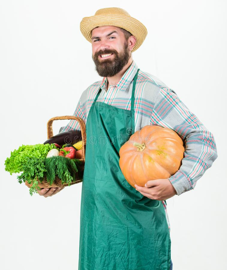 Yrkesm?ssig ockupation f?r bondelivsstil Lantbruk och jordbruk Bakgrund f?r pumpa f?r h?ll f?r bondekl?derf?rkl?de vit arkivbild