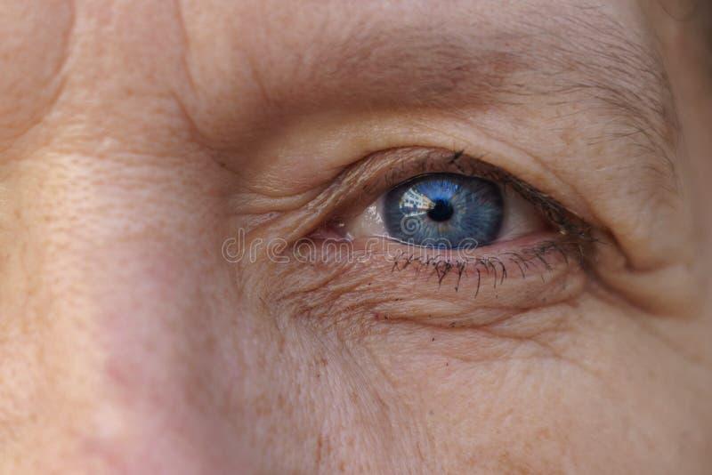 Ytterlighet kantjusterat blått öga av en medelålders kvinna arkivbilder