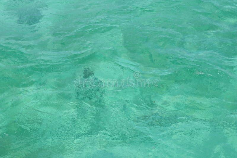 Yttersida av karibiskt havsvatten f?r turkos arkivbild