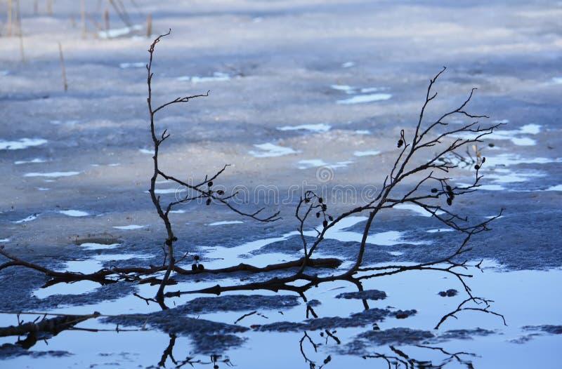 Download Yttersida För Havsvatten I Jurmala, Lettland Fotografering för Bildbyråer - Bild av park, snow: 78726207