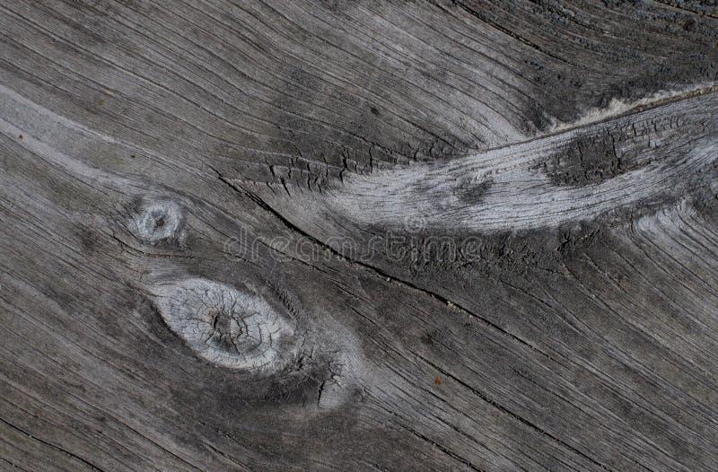 Yttersidan av ett gammalt träbräde royaltyfria foton