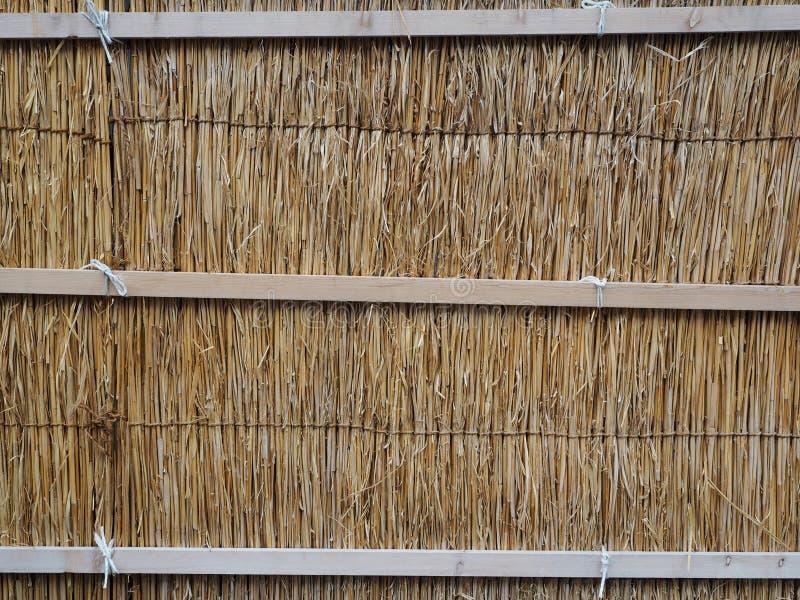 Yttersidan av trät som har använts arkivfoton