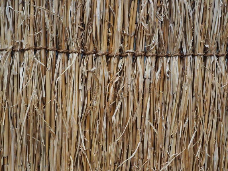 Yttersidan av trät som har använts arkivfoto