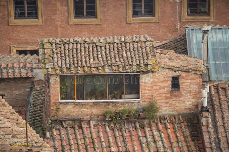 Yttre sikt av en loft i ett forntida hus i Siena, Tuscany, Italien royaltyfri bild