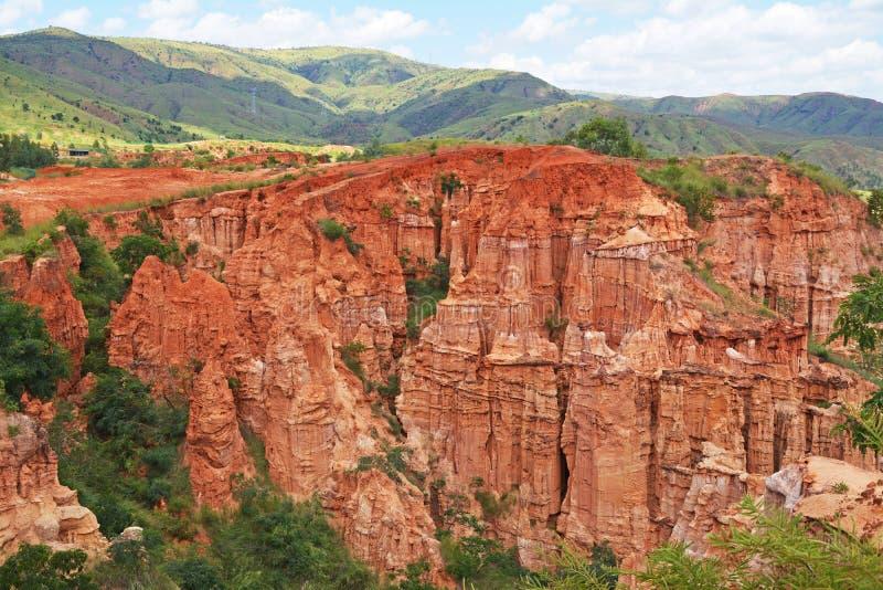 Yuanmou skog arkivbilder