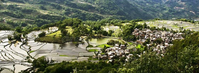 Yuanyang-Reisterrasse stockbild