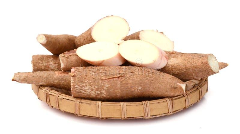 Yuca Wurzel Lebensmittel, knötchenförmig lizenzfreie stockfotos