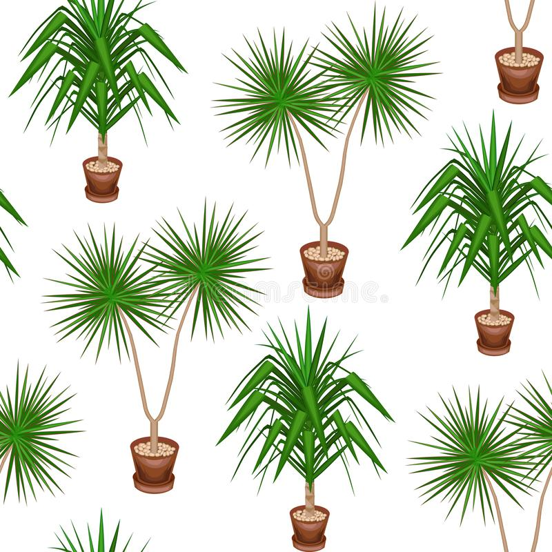 Yucca et dracaena dans des pots sur un fond blanc Un mod?le de fantaisie Costumes comme papier peint, comme fond pour l'emballage illustration de vecteur