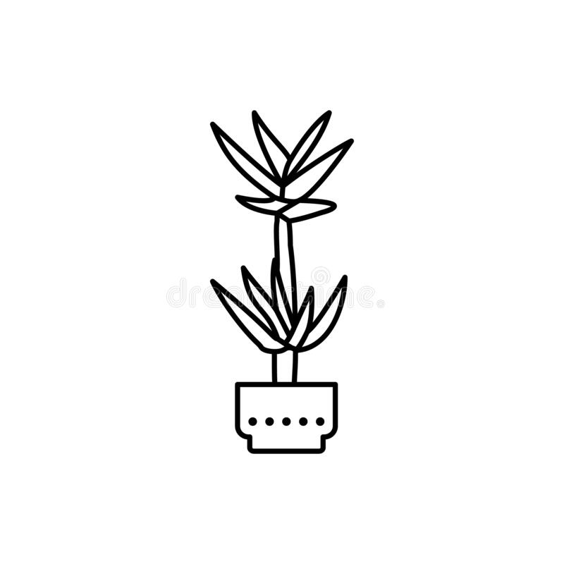 Yucca icon. Simple line, outline vector elements of house plant for ui and ux, website or mobile application. On white background vector illustration