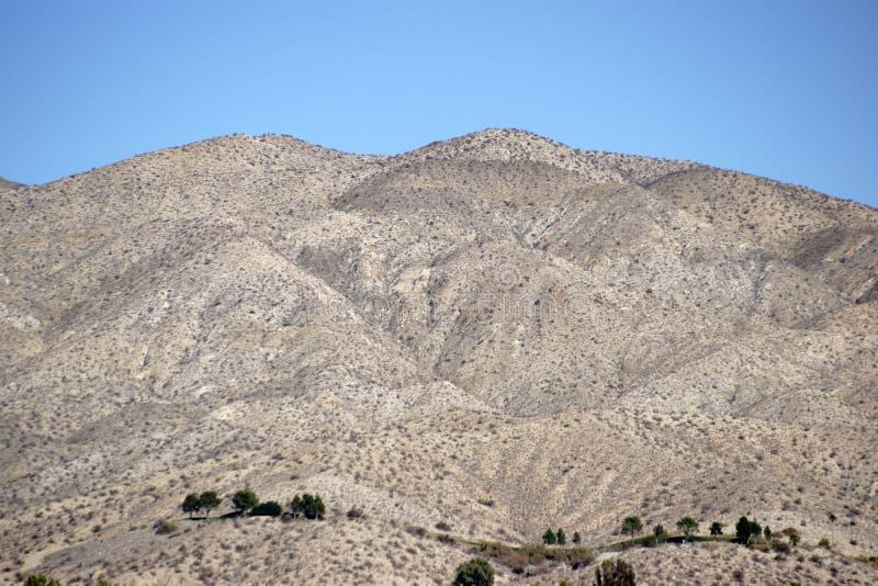 Yuccavallei stock fotografie