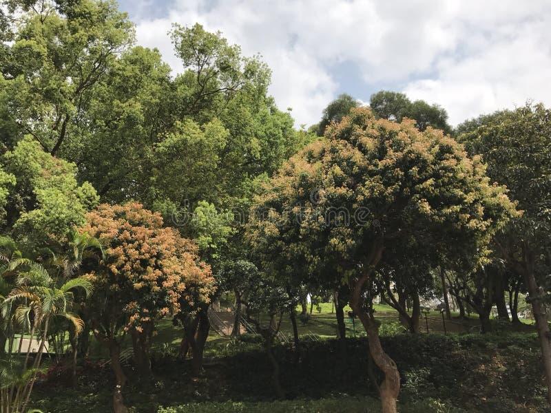 Yuen Long Park lizenzfreie stockbilder