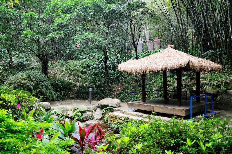 Yuexiu park scenery royalty free stock photo