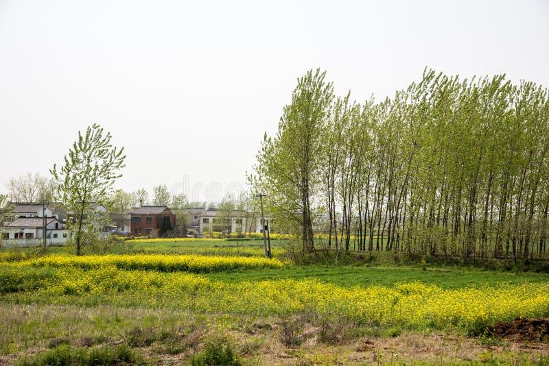 Yueyang Village royalty free stock photography
