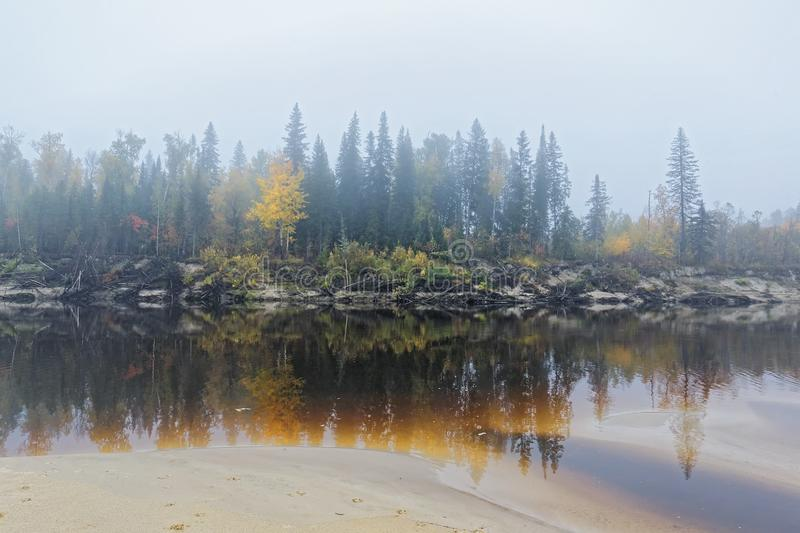 Yugra, a misty morning on the bank of the taiga river. Siberia,Yugra, a misty morning on the bank of the taiga river Bolshoy Yugan. Late autumn, cold snap stock photo