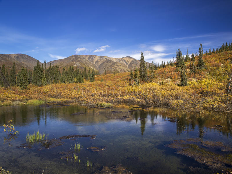 Yukon foto de stock