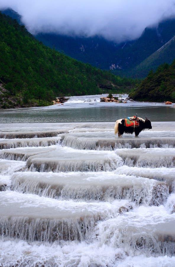 yulong яков снежка горы стоковая фотография