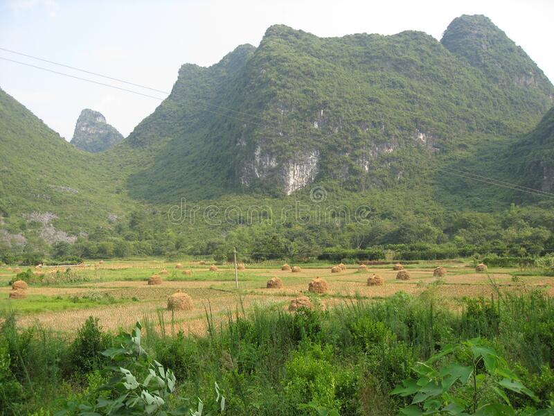 Yulong river hay field bales. Travel view of Yangshuo featuring Yulong river hay field bales. The image location is Guangxi in China, Asia royalty free stock photography