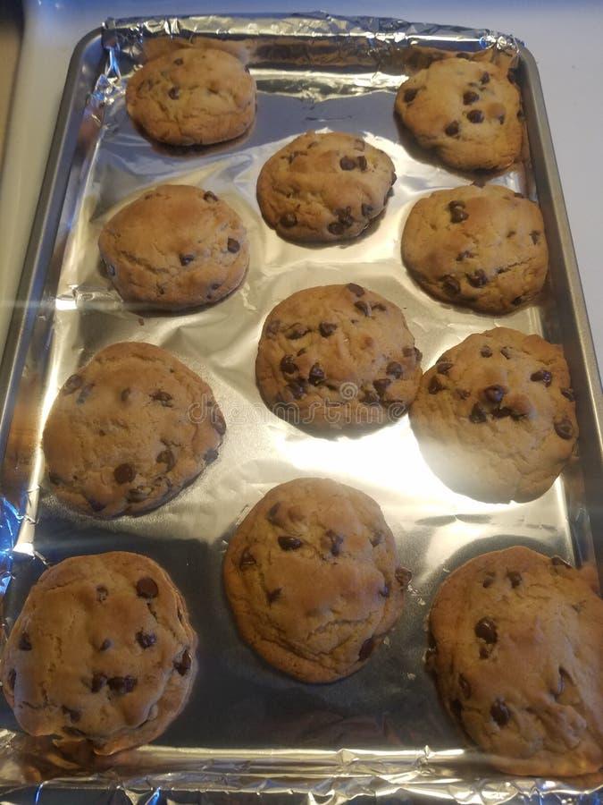 Yum, koekjes! royalty-vrije stock fotografie