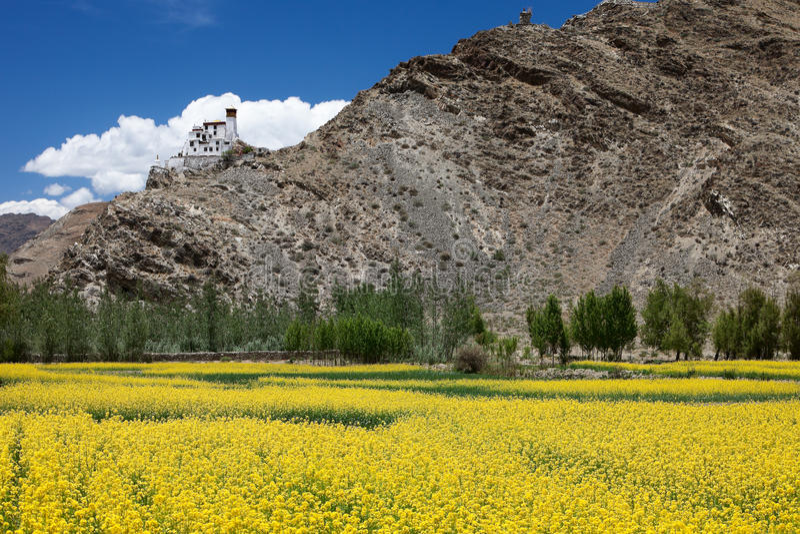 Download Yumbu Lha Khang Palace, Tibet Stock Photo - Image: 22903940