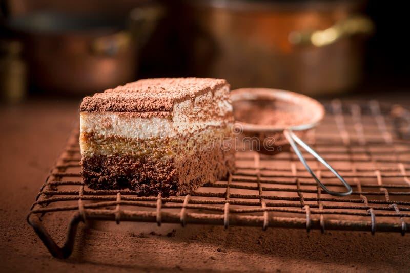 Yummy торт тирамису с какао, mascarpone и печеньями стоковые фотографии rf