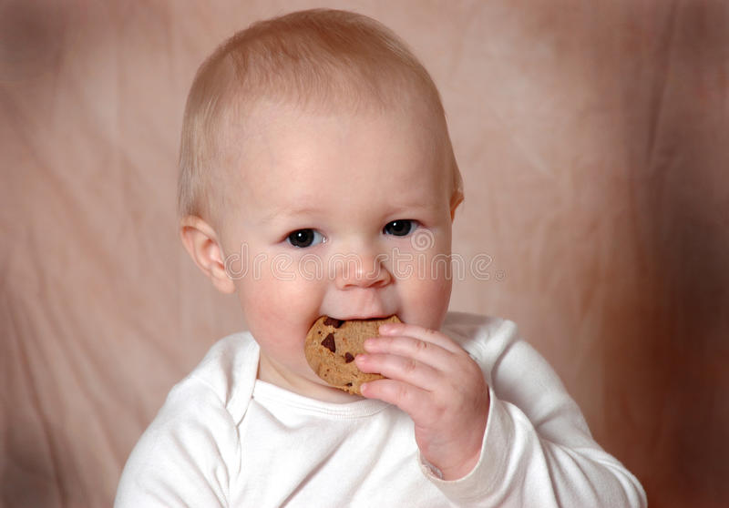 Download Yummy Cookie stock image. Image of child, camera, shoulders - 18228857