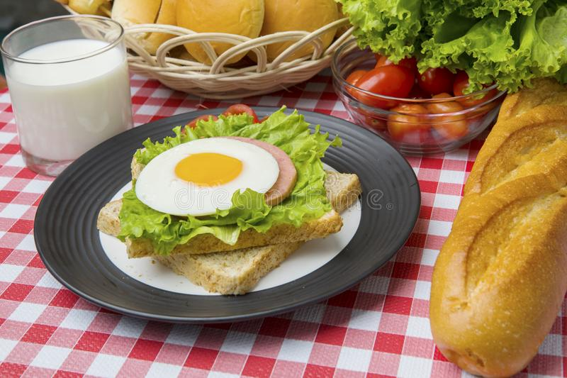 Yummy egg sandwich with milk on the table royalty free stock images
