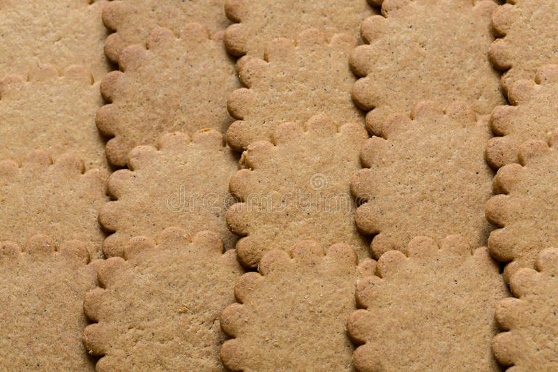 Yummy Ginger cookies, traditional Christmas treat. Gingerbread background.  stock image