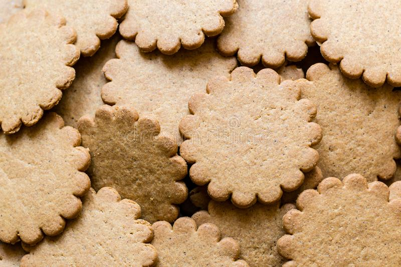 Yummy Ginger cookies, traditional Christmas treat. Gingerbread background. Close up image stock photography