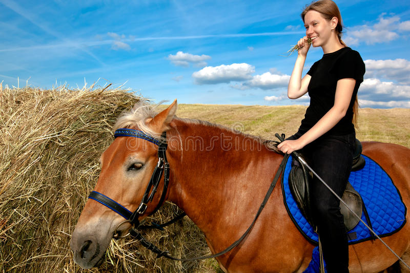 Yummy Hay stock photography