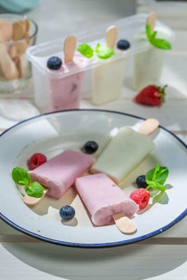 Yummy lody z fruity jogurtem zdjęcie stock