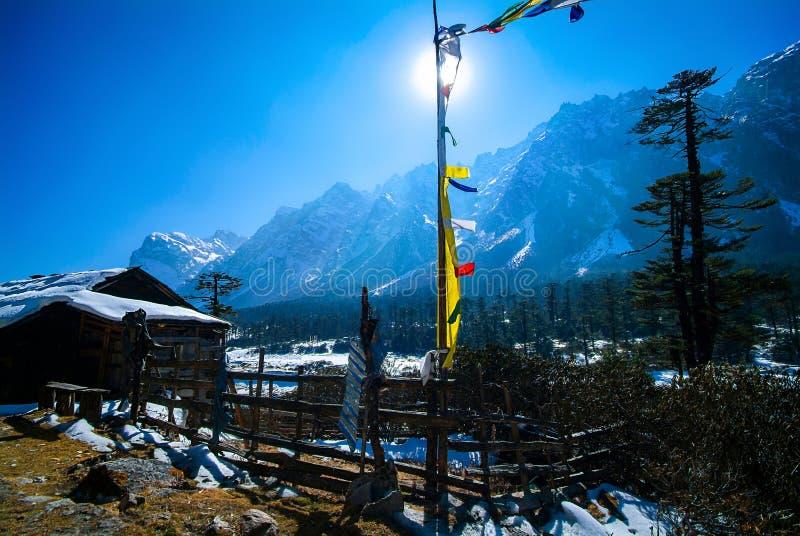 Yumthang-Tal im Winter stockfotografie