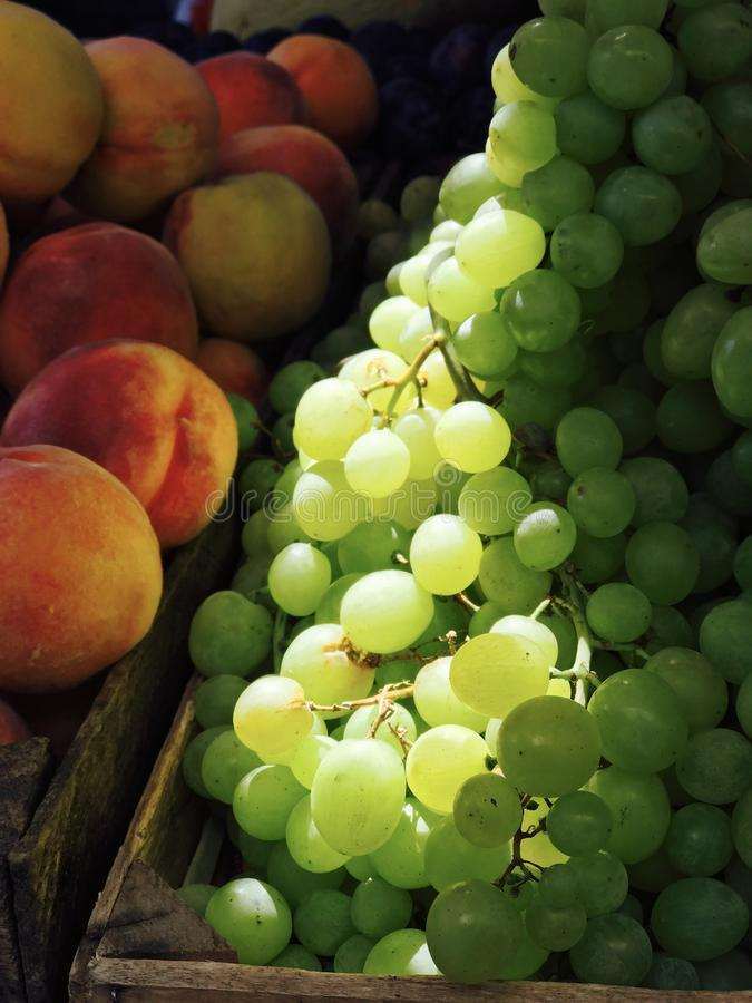 Yumy Grapes and delicious Peaches are wonderfully illuminated in natural light & sunshine. A grape is a fruit, botanically a berry, of the deciduous woody vines royalty free stock image