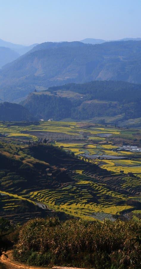 Yunnan royalty free stock photography