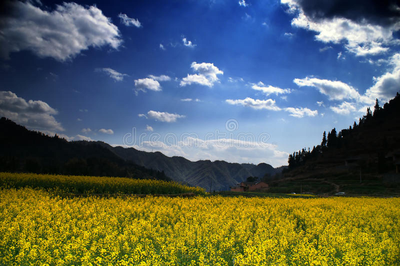 Yunnan stock image