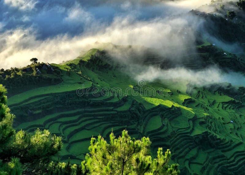 Yunnan Kina solnedgång arkivfoto