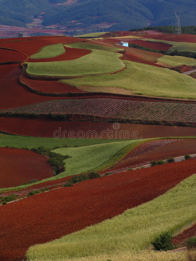 Download Yunnan Red Soil Dry Stock Photography - Image: 19583942