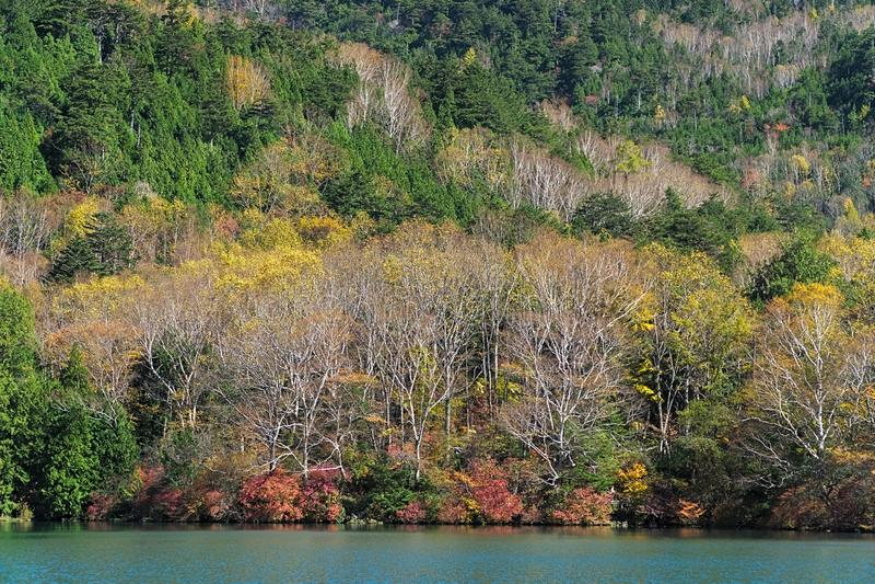 Yunoko See im Herbst, Nikko, Japan stockfoto