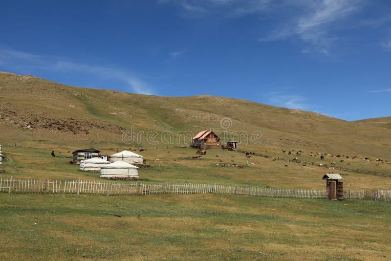 Yurt村庄蒙古 免版税库存图片