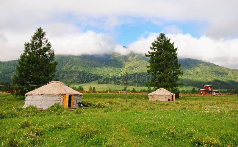 Yurt de Altai fotos de stock