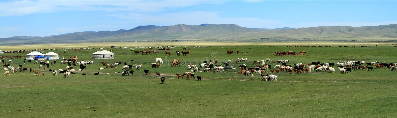 Yurt-Dorf Mongolei lizenzfreie stockfotos