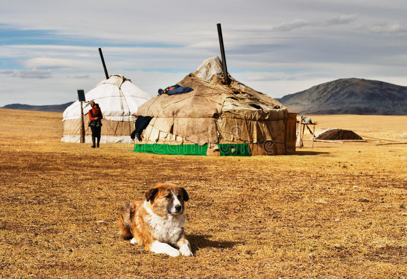 Yurta in der mongolischen Wüste lizenzfreie stockfotos