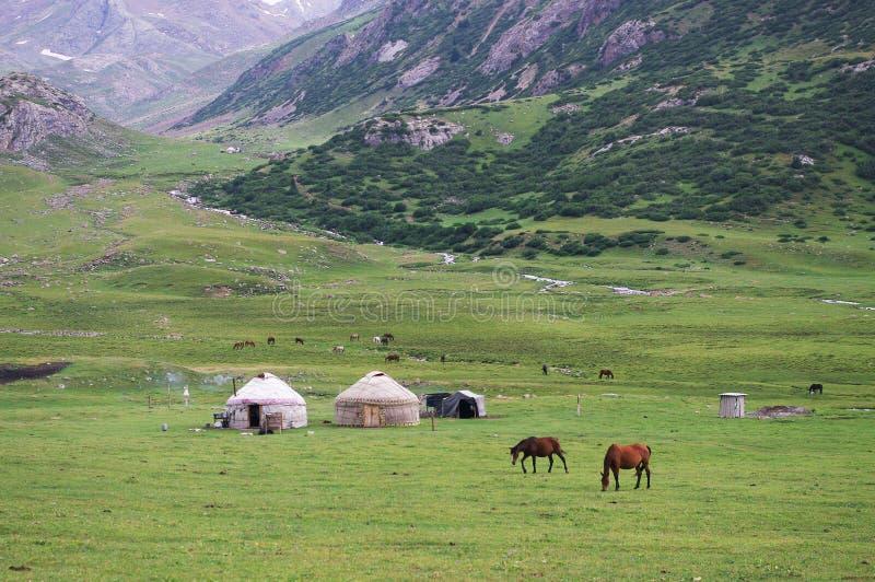 Yurts和马在吉尔吉斯斯坦 免版税库存照片