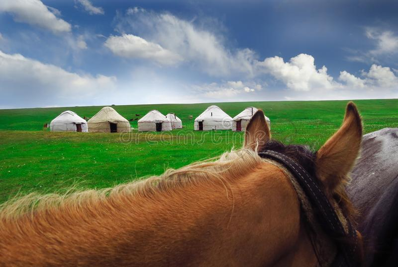 Yurts and horse in Kyrgyzstan royalty free stock images
