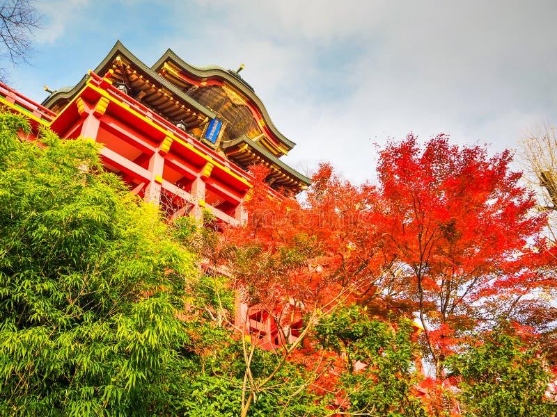 Yutoku inari świątynia w saga zdjęcie stock