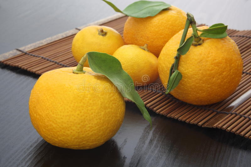 Yuzu aromatic citron. On the basket made from bamboo royalty free stock photos