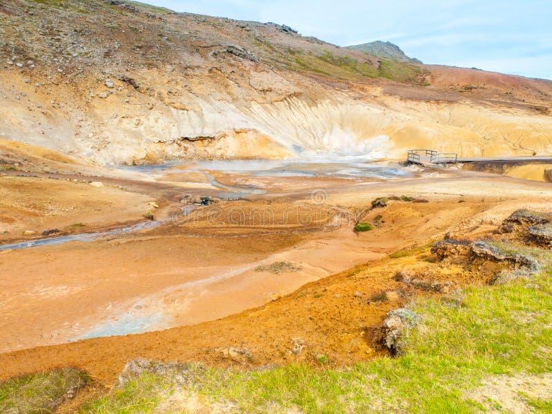 ?ywa stubarwna ziemia w geotermicznym terenie Seltun blisko Krysuvik, Iceland fotografia stock